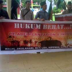 Koalisi Pemburu Penjahat Lingkungan (LBH Pekanbaru, Walhi RIau, Jikalahari, RCT, HIPPMIH, FITRA, HMI MPO)